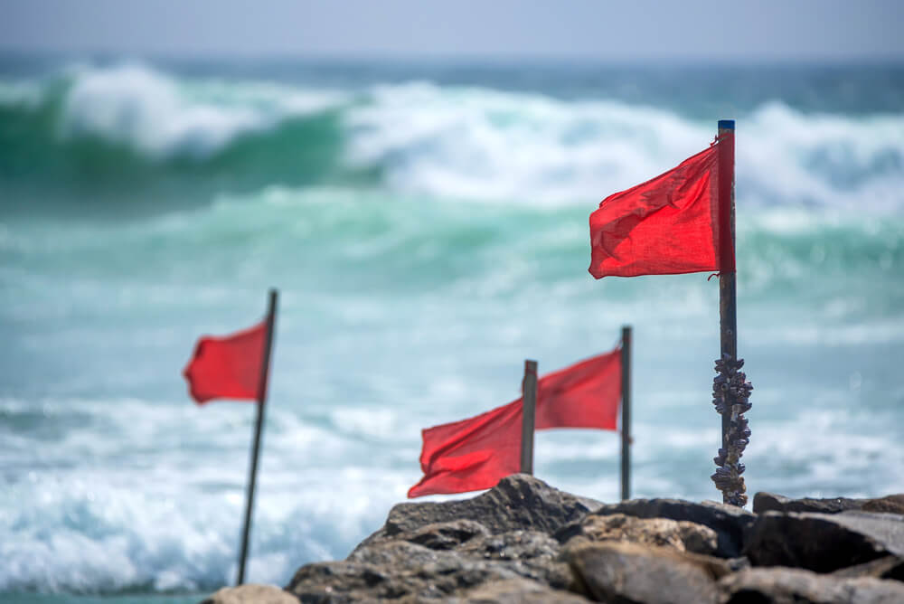 SEO Agency Red Flags